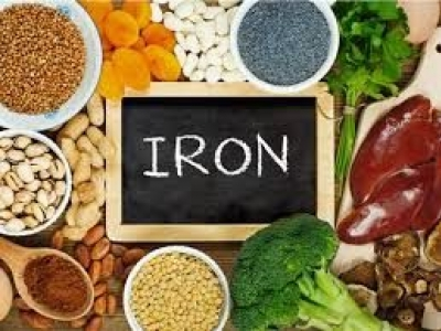 It's Important To Have Iron Rich Food In Your Diet
