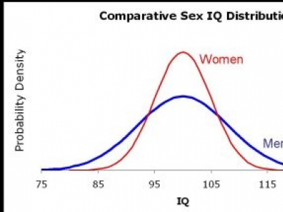 "Male ""Geniuses"" Should Take Note of the Bell Curve"