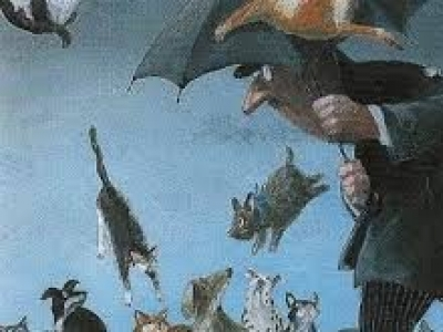Severe Weather! Bring in Your Dogs & Cats!