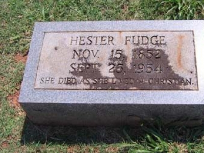 The Near Death Experience of Hester Allison Fudge